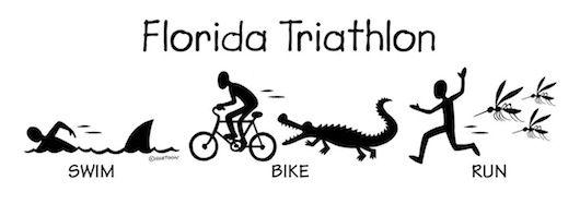 Florida Triathlon - Start your training now that it's summer!