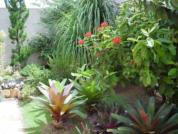 Jardim Residencial com Plantas Grandes