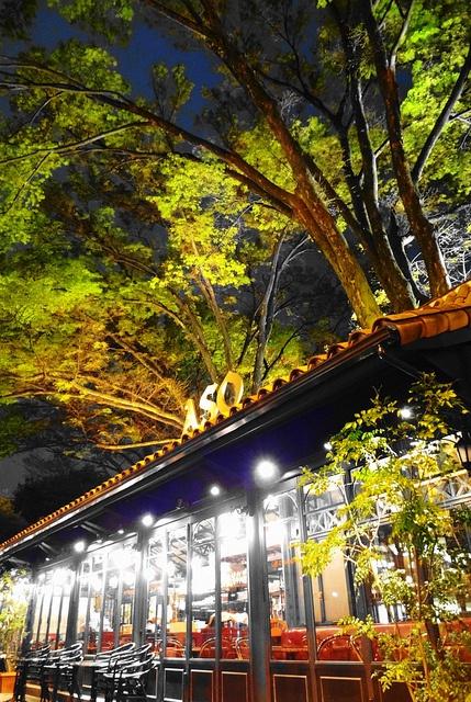Bar in Daikanyama, Tokyo