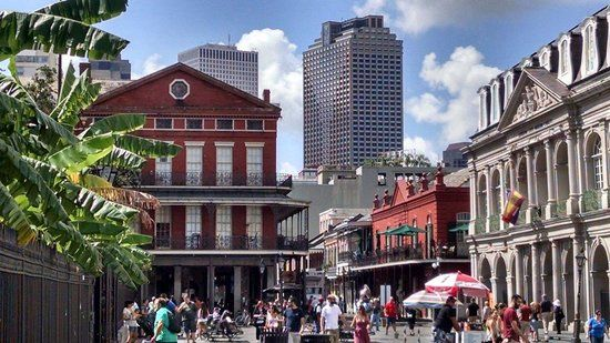 New Orleans' Original Cocktail Tour (LA) on TripAdvisor: Address, Phone Number, Tickets & Tours, Attraction Reviews