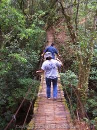 Resultado de imagen para parque nacional montecristo - el trifinio
