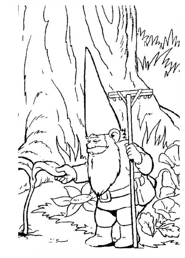 david the gnome, : David the Gnome Checking His Plant Coloring Pages