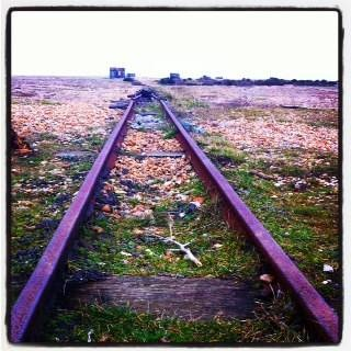 The rails that once brought fish from the Dungeness fleet to the road