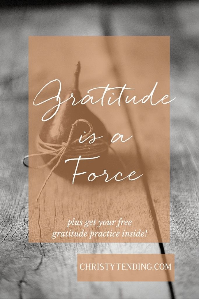 Gratitude is a Force (plus a free gratitude practice!) - Christy Tending Healing Arts - www.christytending.com - self-care practices for world-changers