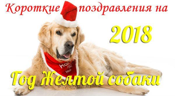 СМС с Новым годом 2018, годом Собаки, короткие, прикольные | Стихи дари на праздник