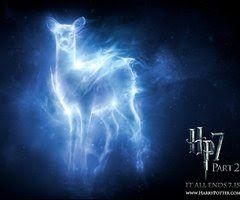 petronus - Google Search. Harry Potter thing