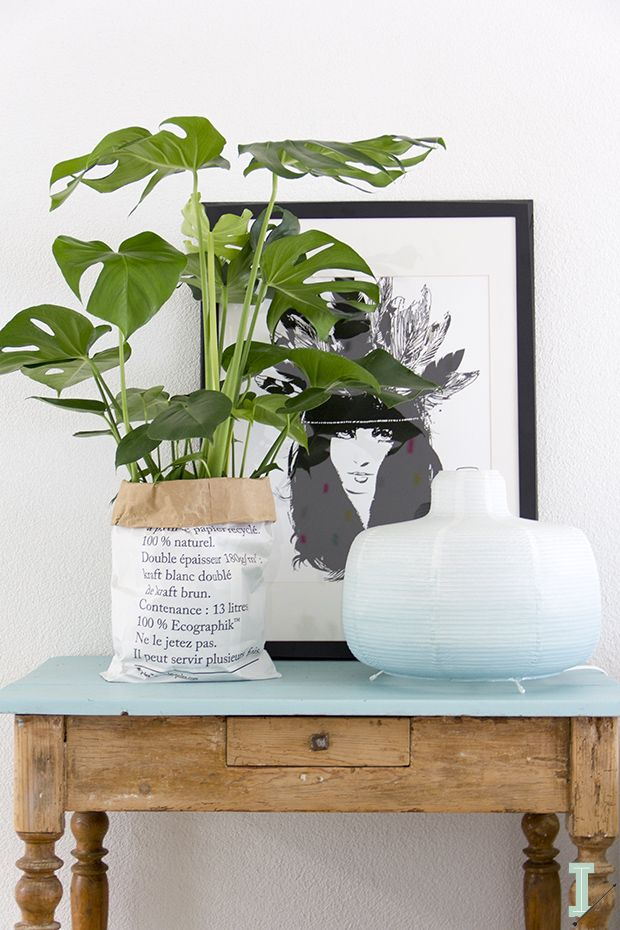 IDA interior lifestyle: Monstera love