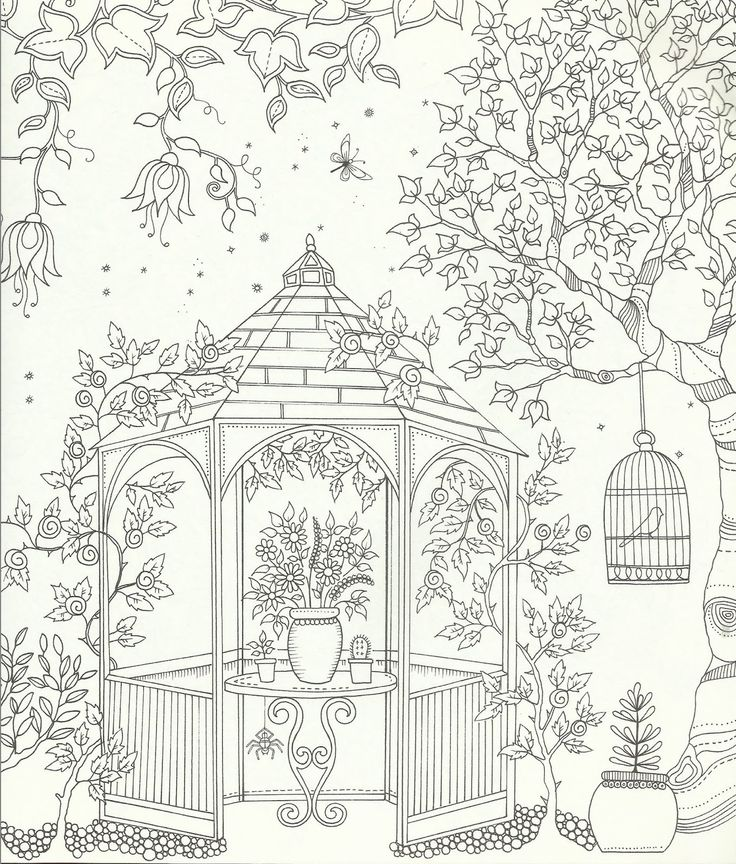 Coloring Book For Adults Garden