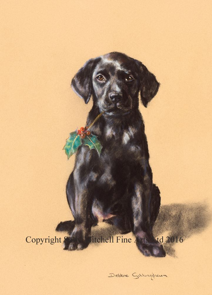 Black Labrador Christmas Cards 'Black Holly' Pack of 10 Cards C342X