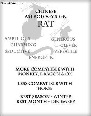 Rat Zodiac Traits, I do love winter....