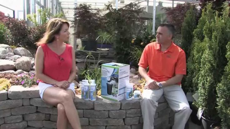 Today Derek Dunphy of Aquascape joins us with some great insight to maintain your pond and how easy it really can be. Later we travel to Brass Bombshells Pole Dance and Aerial Fitness Studio in Burlington to explore a fun and challenging way to stay fit. Back in the TERRA @ Home kitchen Chef Mark gives us some great inspiration for Father's Day next weekend when he makes some amazing potato skins. #FathersDayRecipe #FishPond