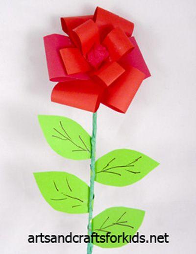 Rosa quadratsrodons.blogspot.com.es