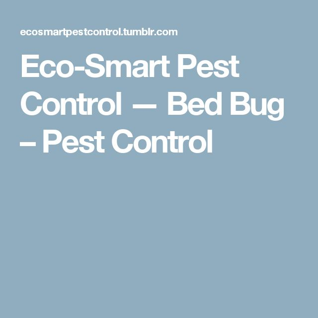 Eco-Smart Pest Control — Bed Bug – Pest Control