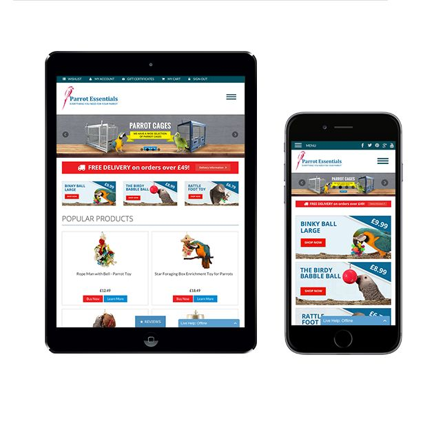 What is a responsive website? When you can browse it on any e-device effortlessly.  That's what we do, transforming an ordinary siye into a responsive one.  Get your free mockup design.