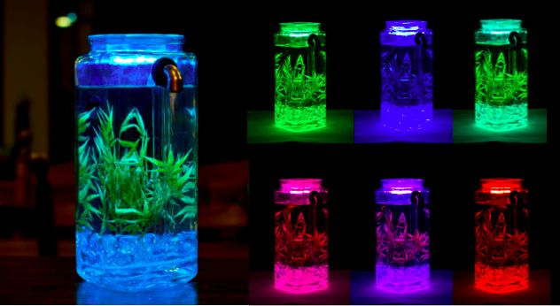 Truly self cleaning noclean betta fish tank multi color for Best way to clean a fish tank
