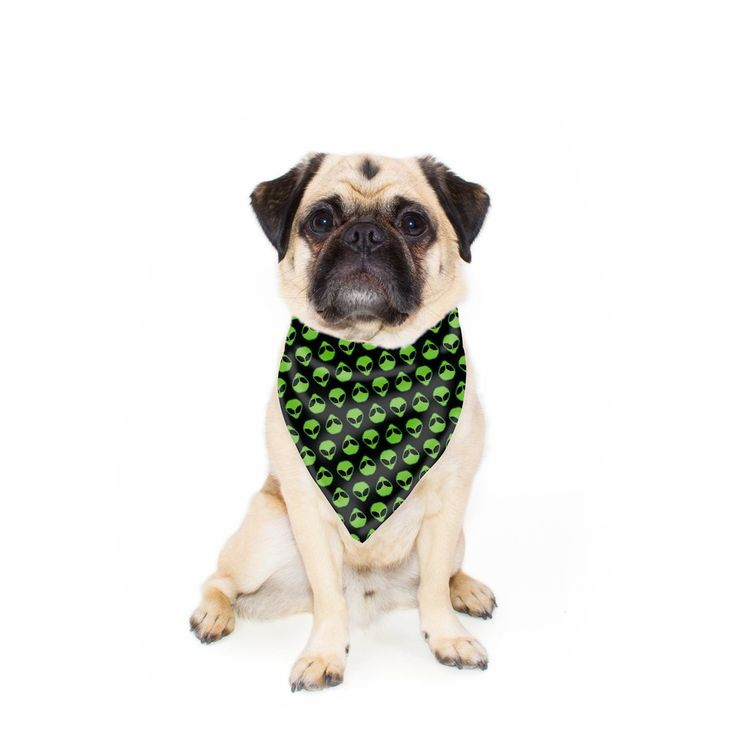 """Take us to your leader! The Alienz Pet Bandana is a must have accessory for any alien invasion."""