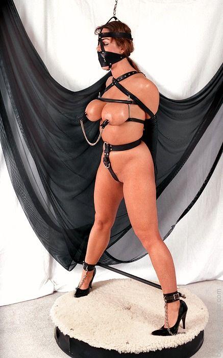 Alexis Taylor Porn 24