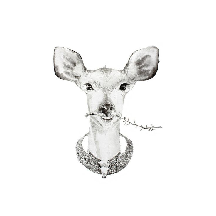Watercolor Illustrations of Bejeweled Animals