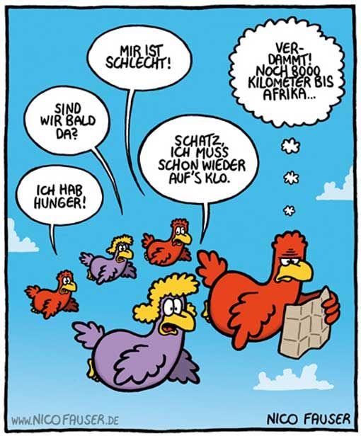 Elegant Reisen Ist Die Sehnsucht Nach Dem Leben (v. Kurt Irgendwer, Von Irgendwo).  Lustige CartoonsLustige SprücheLustige ...