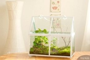 die besten 25 kleines aquarium ideen auf pinterest fisch peiltabelle kleine aquarien und diy. Black Bedroom Furniture Sets. Home Design Ideas