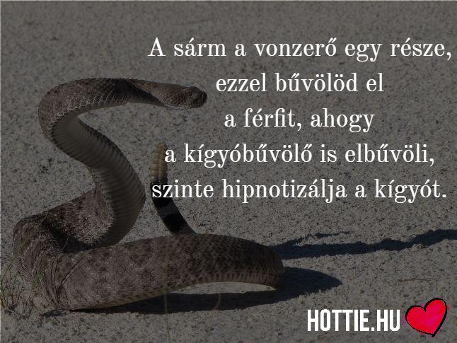 Jól látod, a #sárm nem kizárólag a pasik fegyvere... ;) http://bit.ly/hottie-shop #hottiemorzsa #vonzerő