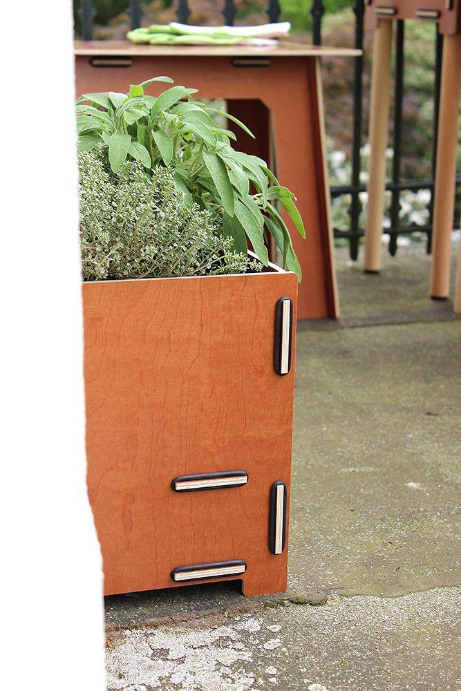 Thymian und Salbei im Blumentopf. Produkt: Pflanzbox Quadrat ohne Beine