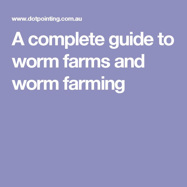 A complete guide to worm farms and worm farming