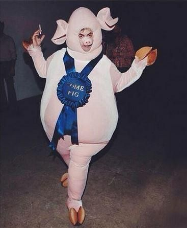 The 25 best pig costumes ideas on pinterest pig halloween funny prize pig costume solutioingenieria Images
