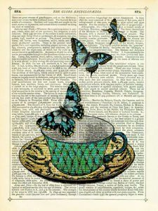 Butterfly Teal Marion McConaghie