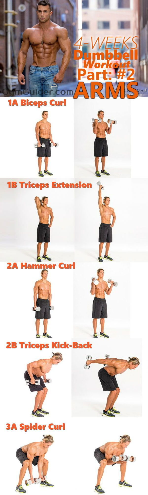 The 4-Week Dumbbell Workout Plan Part 2: Arms