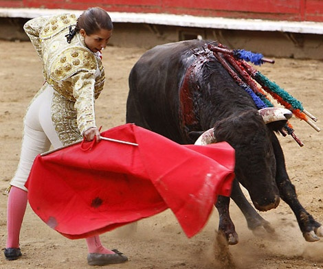 bullfighting speech 100 extra interesting persuasive essay topics that  100 extra interesting persuasive essay topics that every  no matter how good persuasive speech.