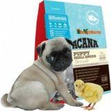 Сухой корм Acana Puppy Small Breed для щенков мелких пород