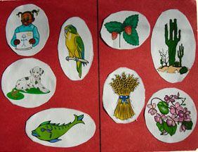 """Have children sort pictures into """"plants"""" and """"not plants"""""""