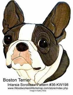 36-KW198 - Boston Terrier Head Intarsia Woodworking Pattern