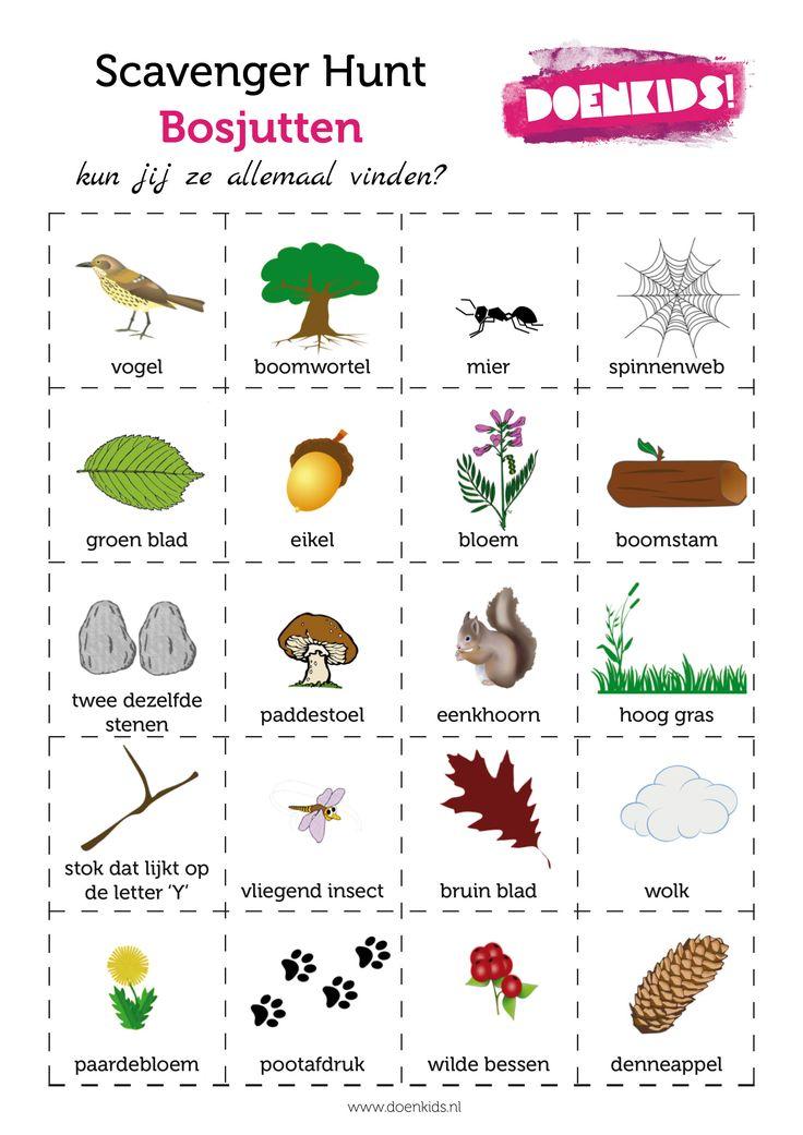 Scavenger Hunt - Bosjutten www.activitheek.nl. Activiteit herfst klas kind