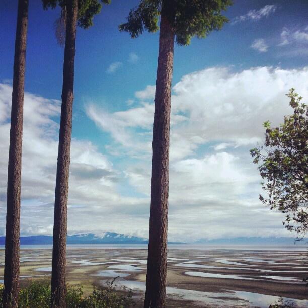 #Parksville #VancouverIsland #LowTide