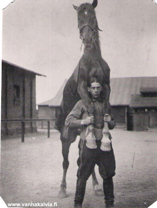 Ystävykset - Ahti Herlevi (Jalmari ja Ellen Maria Herlevin poika, s. 1915) hevosen kanssa Lappeenrannassa. Kuva on arviolta 1940-luvulta. - Finnish horse