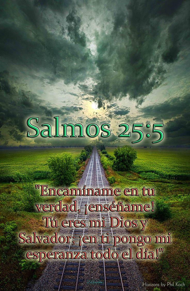 """- Salmos 25:5 - """"Encamíname en tu verdad, ¡enséñame! Tú eres mi Dios y Salvador; ¡en ti pongo mi esperanza todo el día!"""""""