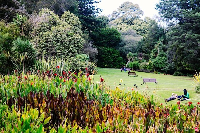 Royal Botanic Gardens, Melbourne Australia Travel