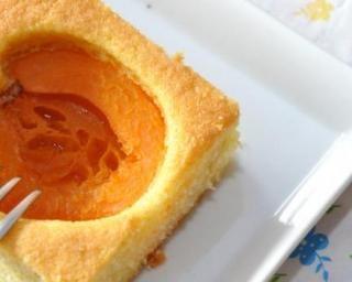 Abricotine légère au tofu du Dr Dukan : http://www.fourchette-et-bikini.fr/recettes/recettes-minceur/abricotine-legere-au-tofu-du-dr-dukan.html
