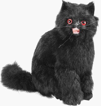 Halloween Cat Prop