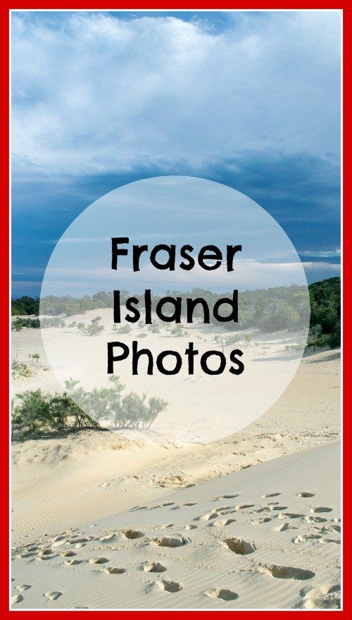 Here are some Fraser Island pics to convince you that Fraser Island, (K'gari) is incredibly unique, wildly beautiful, and great for holidays with kids. World heritage listed since 1992, it has many amazing features that ares best experienced in a tent, with a 4WD and a fishing rod.