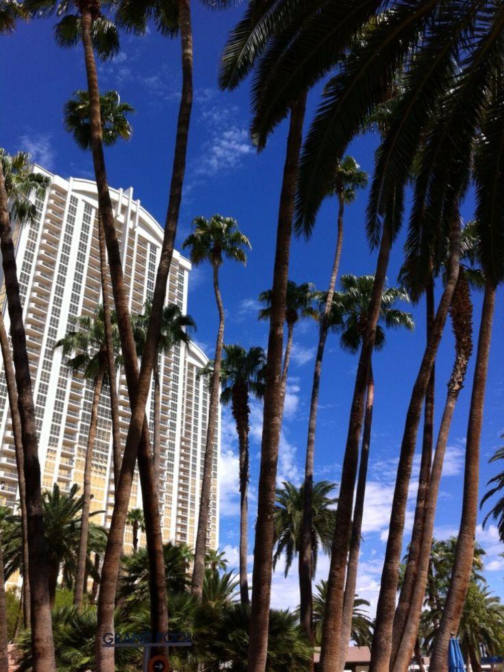 Hotel à Las Vegas vu à la piscine du MGM Grand