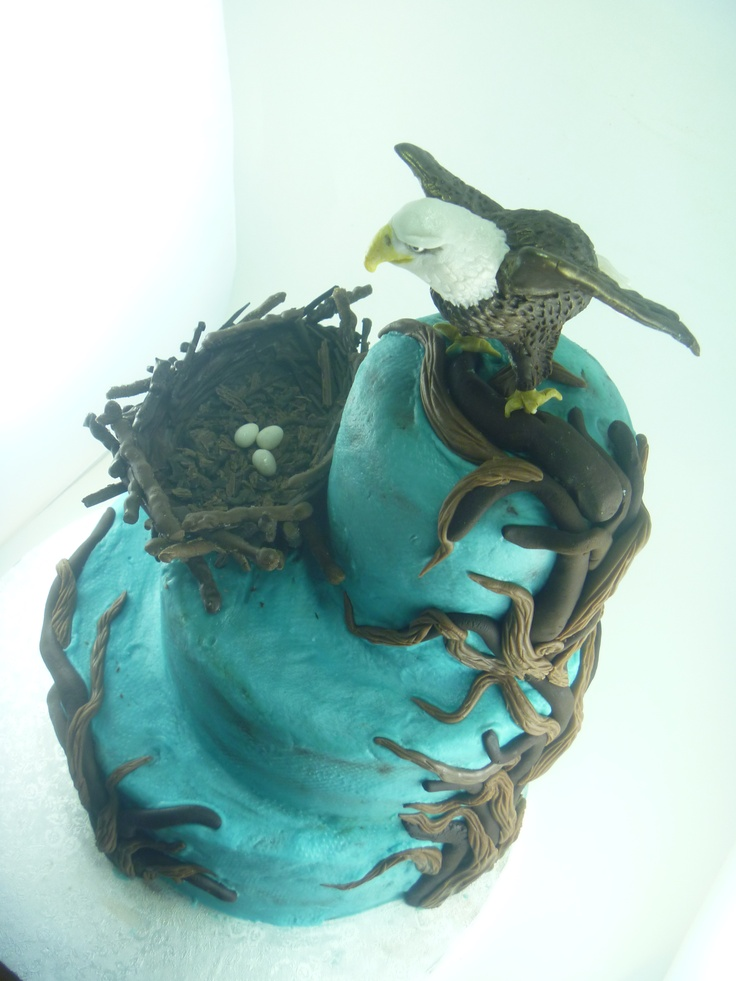 Eagle cake for eagle biologists 60th bday, by Serena Bartok