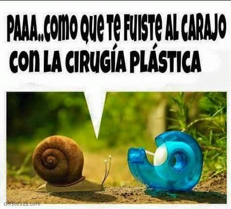 Cirugía+Plástica