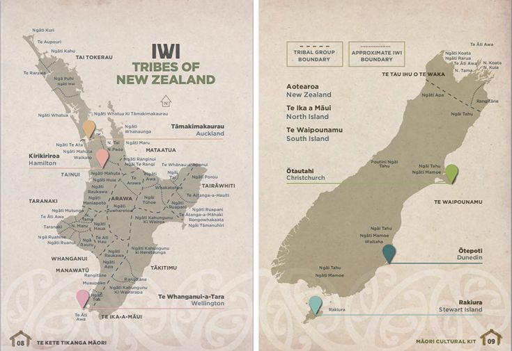 From NZTE's Māori Cultural Kit for people wanting to do business with Māori organisations, a map showing tribal boundaries of New Zealand's Māori iwi.
