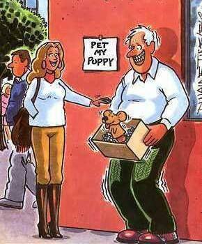 Funny adult cartoon - http://jokideo.com/funny-adult-cartoon/