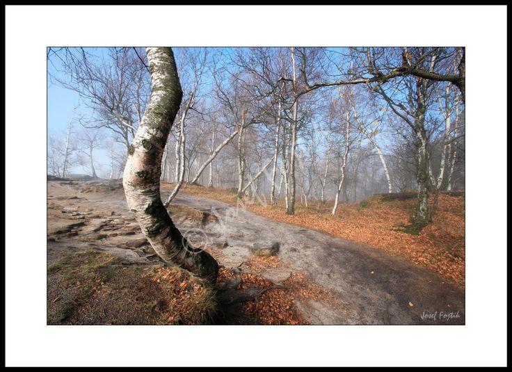 Fotoobraz - Tiské stěny, severní Čechy, Česká republika. Foto: Josef Fojtík - www.fotoobrazarna.cz