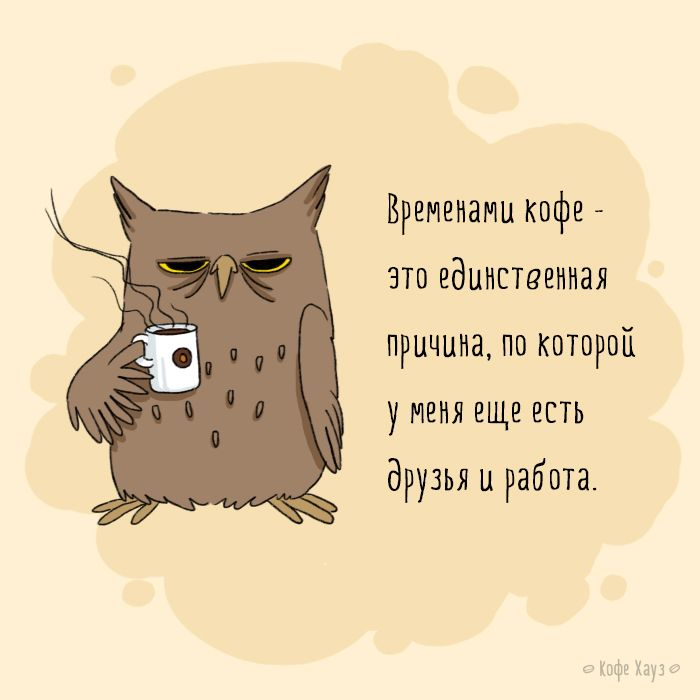#кофе #сова #утро #morning #coffee #owl