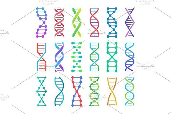 Colorful Dna Icon Adn Structure Dna Dna Molecule Graphic Design Tutorials